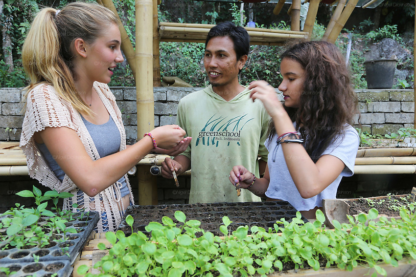 Final year students learning about organic gardening at Green School<br />