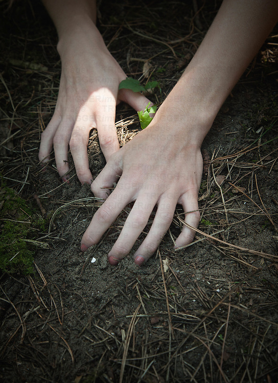 Close up of female hands in earth