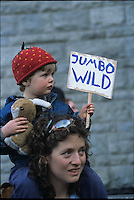 Child at Jumbo Wild Rally, Nelson, BC