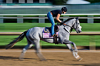 LOUISVILLE, KENTUCKY - MAY 01: Sailor's Valentine, owned by Semaphore Racing LLC and Homewrecker Racing LLC and trained by Eddie Kenneally, exercises in preparation for the Kentucky Oaksduring Kentucky Derby and Oaks preparations at Churchill Downs on May 1, 2017 in Louisville, Kentucky. (Photo by Scott Serio/Eclipse Sportswire/Getty Images)
