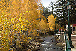 On a September afternoon fall color graces the Riverwalk which follows the Big Thompson River through downtown Estes Park, Colorado, Rocky Mountains