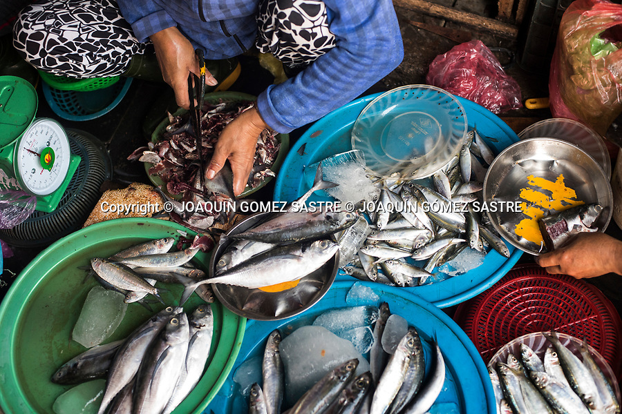 A woman cleans fish at Hoian Market (Vietnam)<br /> HOIAN-VIETNAM