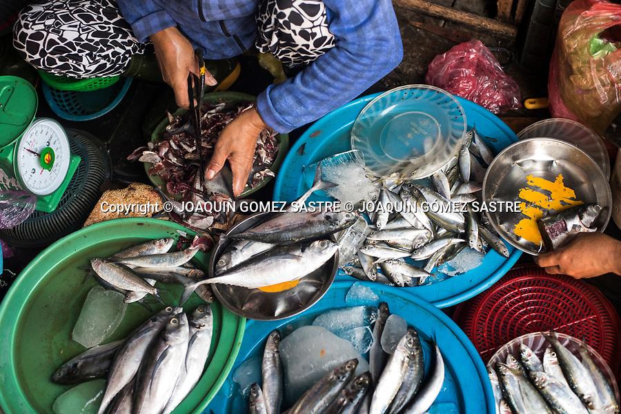 A woman cleans fish at Hoian Market (Vietnam)<br /> HOIAN-VIETNAM