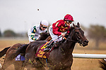 OCT 06: Vitalogy with Javier Castellano races inthe Dixiana Bourbon Stakes races at Keeneland Racecourse, Kentucky on October 06, 2019.  Evers/Eclipse Sportswire/CSM