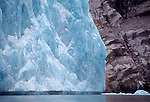 Alaska, Endicott Arm, Dawes Glacier, sea birds forage at the base of a tidewater glacier, Southeast Alaska, Inside Passage,