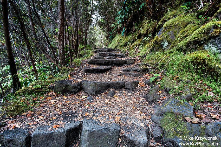 Kilauea Iki trail in Hawaii Volcanoes National Park, Big Island, Hawaii