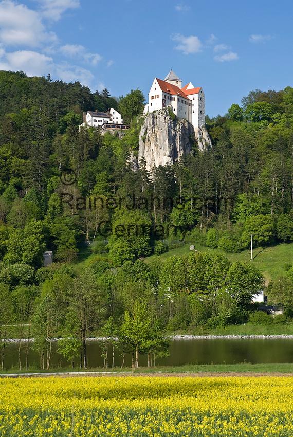 DEU, Deutschland, Bayern, Niederbayern, Naturpark Altmuehltal, bei Riedenburg: Burg Prunn auf einem steil abfallenden Kalkfelsen oberhalb der Altmuehl   DEU, Germany, Bavaria, Lower Bavaria, Natural Park Altmuehltal, near Riedenburg: Castle Prunn above river Altmuehl