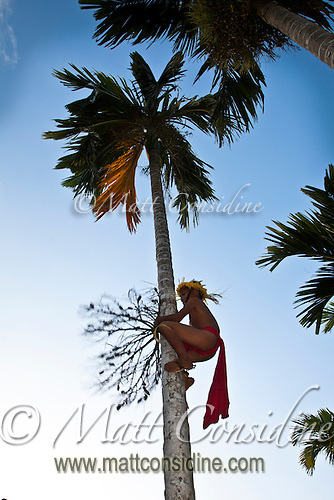 Boy Climbs Betel Palm, Yap Micronesia(Photo by Matt Considine - Images of Asia Collection) (Matt Considine)