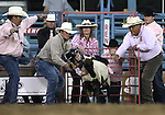 Mutton Bustin' action during the Reno Rodeo on Friday, June 17, 2011..Photo by Cathleen Allison