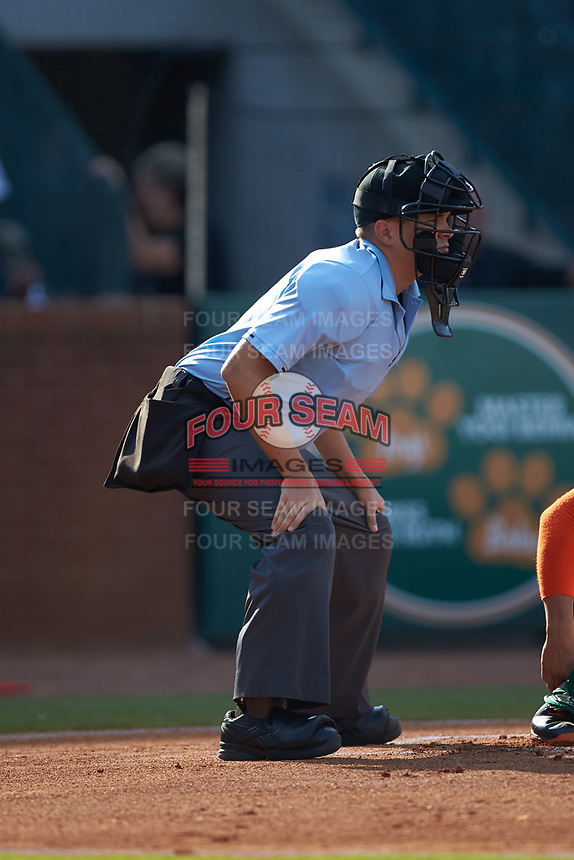Home plate umpire Josh Gilreath during the South Atlantic League game between the West Virginia Power and the Greensboro Grasshoppers at First National Bank Field on August 9, 2018 in Greensboro, North Carolina. The Power defeated the Grasshoppers 5-3 in game one of a double-header. (Brian Westerholt/Four Seam Images)