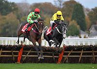Horse Racing 2011-10
