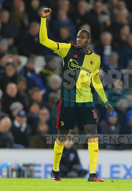 Watford's Abdoulaye Doucoure celebrates after scoring the opening goal during the Premier League match at the American Express Community Stadium, Brighton and Hove. Picture date: 8th February 2020. Picture credit should read: Paul Terry/Sportimage