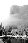 Clearing storm and snow covered trees in Yosemite Valley on El Capitan