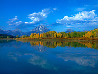 749450320 mid morning at oxbow bend with aspens in brillilant yellow fall color on the snake river in grand tetons national park wyoming