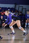 Haley Barnes (20) of the High Point Panthers during the match against the Liberty Flames at the Millis Athletic Center on September 23, 2016 in High Point, North Carolina.  The Panthers defeated the Flames 3-1.   (Brian Westerholt/Sports On Film)