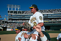 OAKLAND, CA - Jason Giambi of the Oakland Athletics is carried off his teammates shoulders after they beat the Texas Rangers to clinch the America League West at the Oakland Coliseum in Oakland, California on October 1, 2000. (Photo by Brad Mangin)