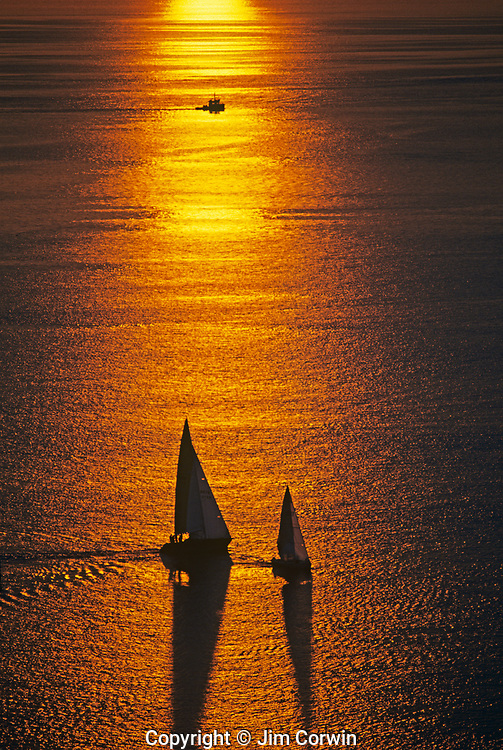 Sailboats silhouetted at sunset on Puget Sound racing with organe glow reflecting on water Seattle Washington State USA