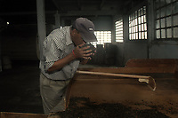 A worker smells the tea after processing and drying at a tea factory in Darjeeling.