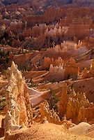 "AJ3835, Bryce Canyon, Bryce Canyon National Park, Paunsaugunt Plateau, Utah, Spectacular view of jagged colorful rock formations and pillars called """"hoodoos"""" in the canyon of Bryce Canyon Nat'l Park in the state of Utah."