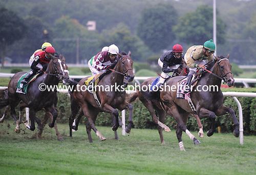 Sagamore Farm's Shared Account wins Lake Placid Stakes at Saratoga Race Course