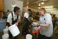 While  Oregon Department of Fish and Wildlife Rock Creek Fish Hatchery assistant manager John Schmitz, left, and experimental biologist aide Manuel Annear, right, clean up  hatcery technician  Colleen Weiss mixes sperm and eggs in a plastic bag at the hatchery, on a tributary of the North Umpqua River Tuesday May 13, 2003. The sperm of multiple summer steelhead are combined with the eggs of multiple females to increase genetic diveristy. Hatchery employees also spawn salmon and other trout which the use to the lakes and streams of the North Umpqua River.