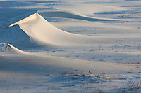 Snow drifts, Barter Island, Arctic National Wildlife Refuge, arctic, Alaska.