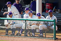 The High Point Panthers played host to the Bowling Green Falcons at Willard Stadium on March 9, 2014 in High Point, North Carolina.  The Falcons defeated the Panthers 7-4.  (Brian Westerholt/Four Seam Images)