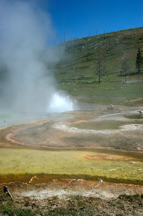 WY: Wyoming; Yellowstone National Park.In Midway Geyser Basin.at Imperial Geyser.Photo #: yellow1505.Photo copyright Lee Foster, 510/549-2202, lee@fostertravel.com, www.fostertravel.com..