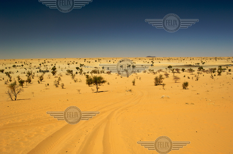 A view of the Sahara Desert outside Timbuktu. /Felix Features