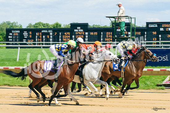 Knacque winning at Delaware Park on 6/8/16