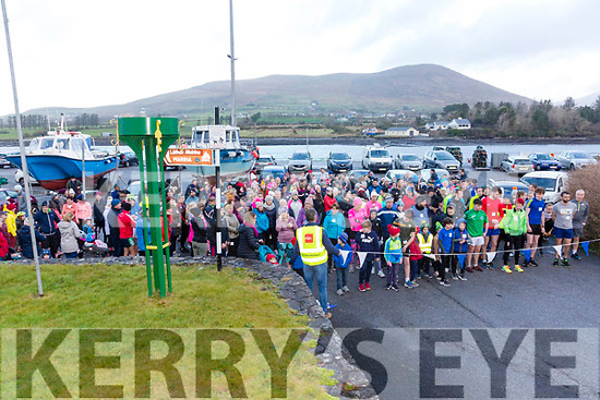 Just over 270 took part in the annual Stephens Day Walk/Run in aid of the Alzheimer Society of Ireland which is organised by the Cahersiveen Rowing Club.