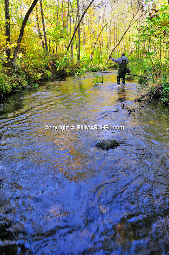 00416-030.12 Fishing:  Angler is fly fishing on stream.  Fall color, brook trout, brown trout, flies, wade.
