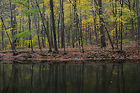 Clearfork Mohican River<br />