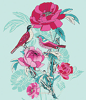 Colorful birds and roses ExclusiveImage