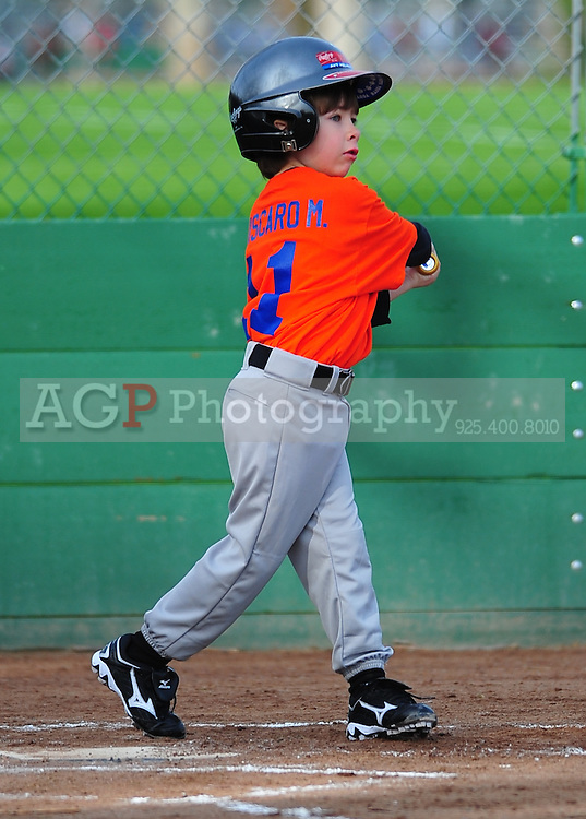 The Pleasanton National Little League Farm Mets play  at the Pleasanton Sports Park Saturday March 20, 2010. (Photo by Alan Greth)