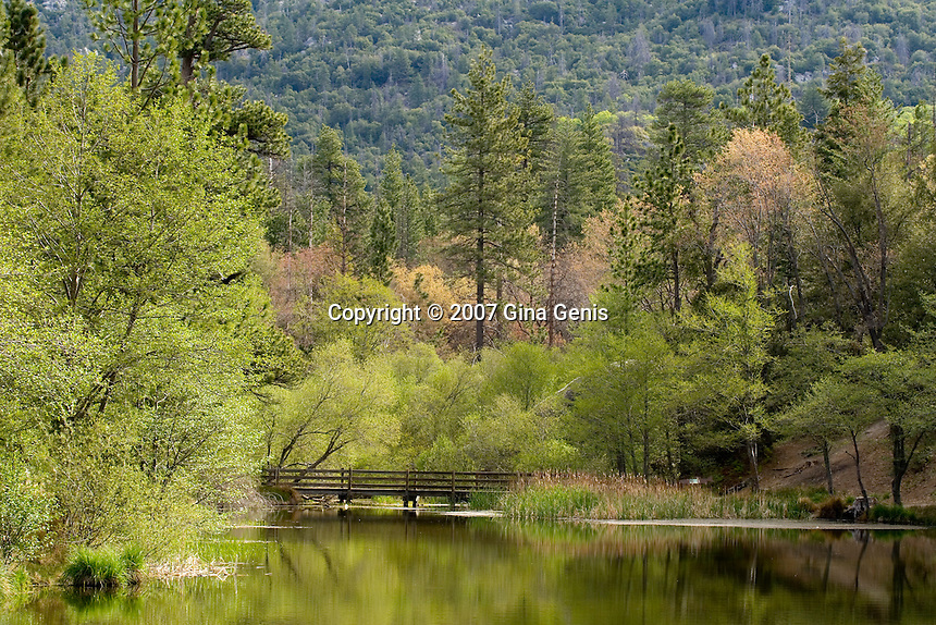 Lake Fulmor in the spring with new foliage. San Jacinto mountains of Southern California