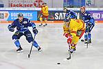 Nicholas B. Jensen (Nr.48 - Duesseldorfer EG), Maurice Edwards (Nr.23 - ERC Ingolstadt) und Wayne Simpson (Nr.21 - ERC Ingolstadt) beim Spiel in der DEL, ERC Ingolstadt (dunkel) - Duesseldorfer EG (hell).<br /> <br /> Foto © PIX-Sportfotos *** Foto ist honorarpflichtig! *** Auf Anfrage in hoeherer Qualitaet/Aufloesung. Belegexemplar erbeten. Veroeffentlichung ausschliesslich fuer journalistisch-publizistische Zwecke. For editorial use only.