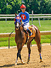 Summer Solution winning at Delaware Park on 7/2/16