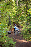 USA, Oregon, Oregon Cascades, two young boys run on the trail during their hike out to Proxy Falls located off the McKenzie Pass on Hwy 242, the Wilamette National Forest