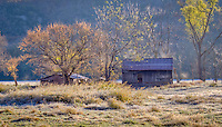 An old barn in Boxley valley, near the Buffalo National River in Arkansas, with an early morning frost covering the ground.