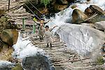 Two boys crossing a pedestrian bridge, Paro Valley, Bhutan
