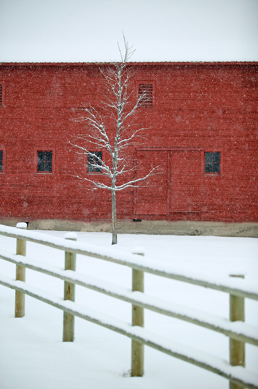 Barn with snow and fence. Near Joseph, Oregon