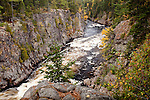 Fall foliage at Ripogenus Gorge, Piscataquis County, ME, USA