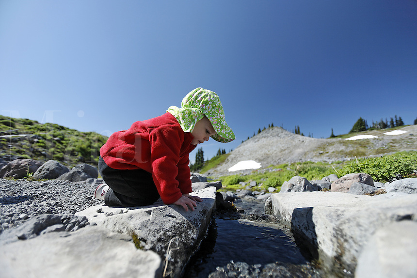 Girl hiker stoops to look into creek crossing Mazama Ridge Trail, Mount Rainier National Park, Washington, USA<br />