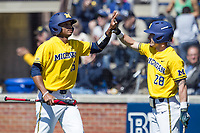 Michigan Wolverines outfielder Johnny Slater (25) is greeted by teammate Nick Poirier (28) after scoring against the Illinois Fighting Illini during the NCAA baseball game on April 8, 2017 at Ray Fisher Stadium in Ann Arbor, Michigan. Michigan defeated Illinois 7-0. (Andrew Woolley/Four Seam Images)