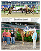 Sparkling Jewel winning at Delaware Park racetrack on 6/23/14