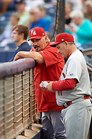 Palm Beach Cardinals manager Dann Bilardello (11) in the dugout during a game against the Charlotte Stone Crabs on April 11, 2017 at Charlotte Sports Park in Port Charlotte, Florida.  Palm Beach defeated Charlotte 12-6.  (Mike Janes/Four Seam Images)
