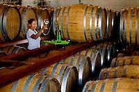 Patos de Minas_MG, Brasil...Cacharia que fabrica aguardente para exportacao em Patos de Minas, Minas Gerais...The cachaca production for exportation in Pato de Minas, Minas Gerais...Foto: LEO DRUMOND / NITRO