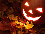 Carved smiling pumpkin on colorful fall leaves. Jack-o'-lantern Halloween symbol.