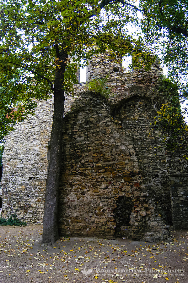 Budapest, Hungary. The ancient ruins of a thirteenth century convent of Dominican nuns on Margaret Island.